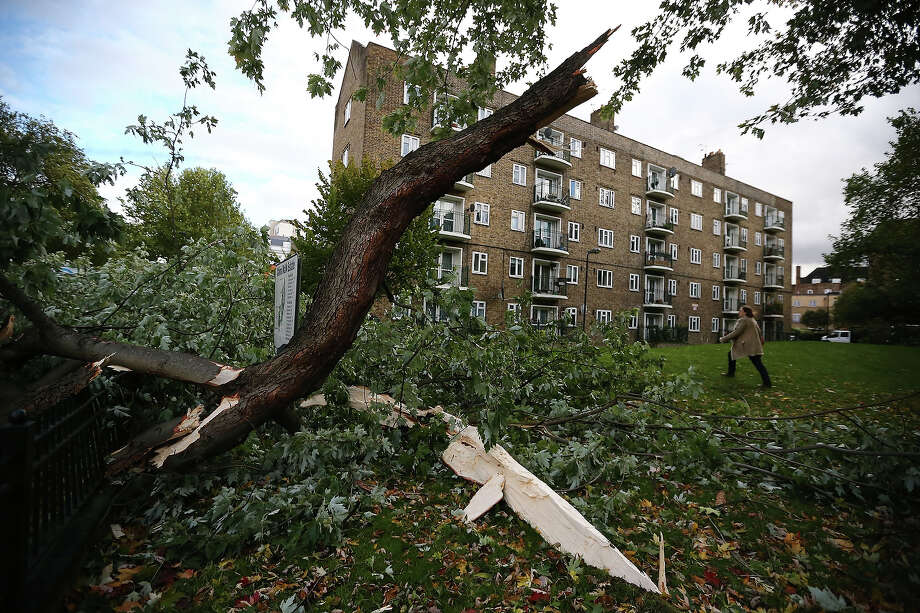 A fallen tree is pictured as Britain faces travel chaos after severe weather conditions on October 28, 2013 in Lambeth, England.  Approximately 220,000 homes are without power and two deaths have been recorded after much of southern England has been affected by a severe storm. Transport links on road, rail, air and sea have been severely disrupted by hurricane-force winds that have almost reached 100 mph in places. Photo: Dan Kitwood, Getty Images / 2013 Getty Images