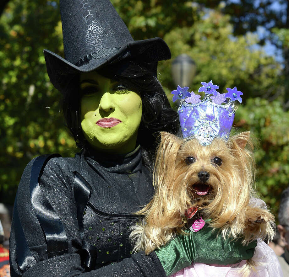 "Minnie and her dog Elanor dressed as the ""Good Witch"" and ""Bad Witch"" from the Wizard of Oz participate in the 23rd Annual Tompkins Square Halloween Dog Parade on October 26, 2013 in New York City. Thousands of spectators gather in Tompkins Square Park to watch hundreds of masquerading dogs in the country's largest Halloween Dog Parade. Photo: TIMOTHY CLARY, AFP/Getty Images / 2013 AFP"
