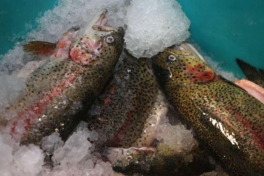McFarland Springs California Trout is one of the fish TwoXSea prepares. Photo: Liz Hafalia, The Chronicle