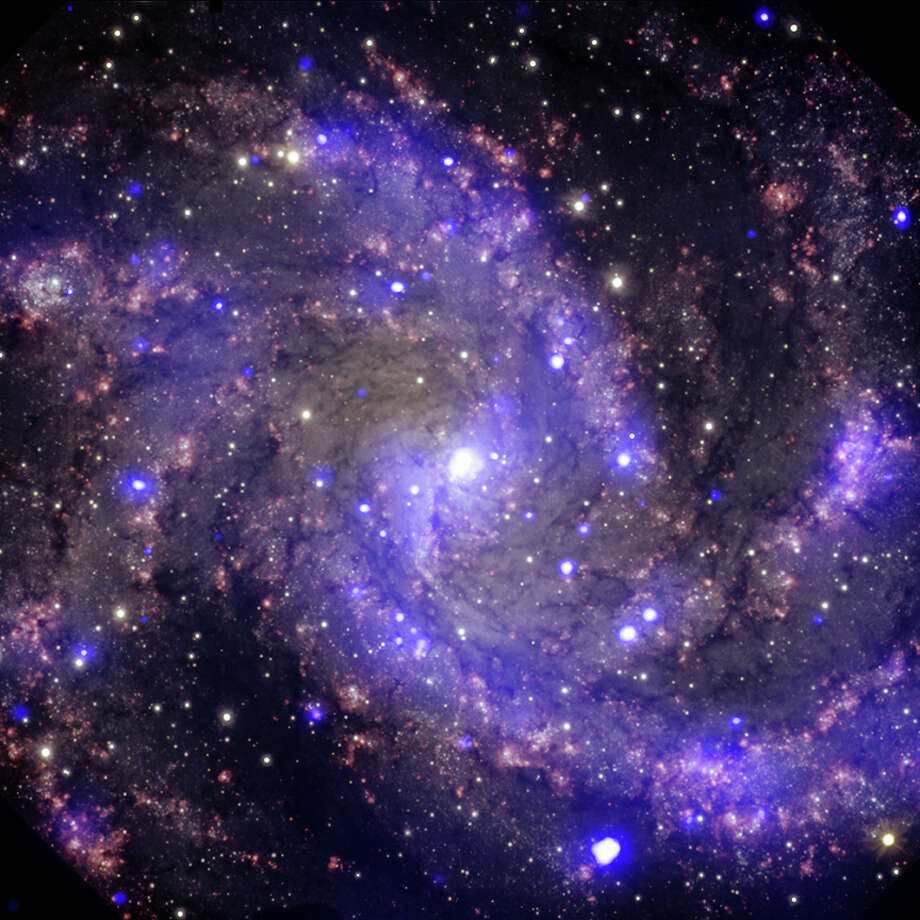 X-ray & Optical Images of NGC 6946