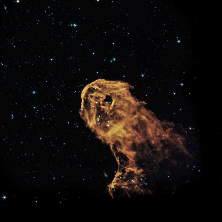 Infrared Image of IC 1396A  When radiation and winds from massive young stars impact clouds of cool gas, they can trigger new generations of stars to form. This is what may be happening in this object known as the Elephant Trunk Nebula (or its official name of IC 1396A). X-rays from Chandra (purple) have been combined with optical (red, green, and blue) and infrared (orange and cyan) to give a more complete picture of this source.(Credit: X-ray: NASA/CXC/PSU/Getman et al, Optical: DSS, Infrared: NASA/JPL-Caltech) Photo: NASA / Chandra X-ray Observatory