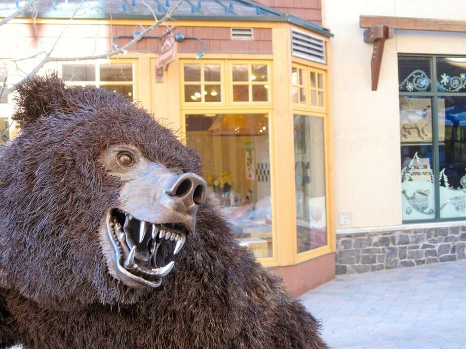 Bears share the streets of Mammoth. Photo: Jules Older, Special To The Chronicle