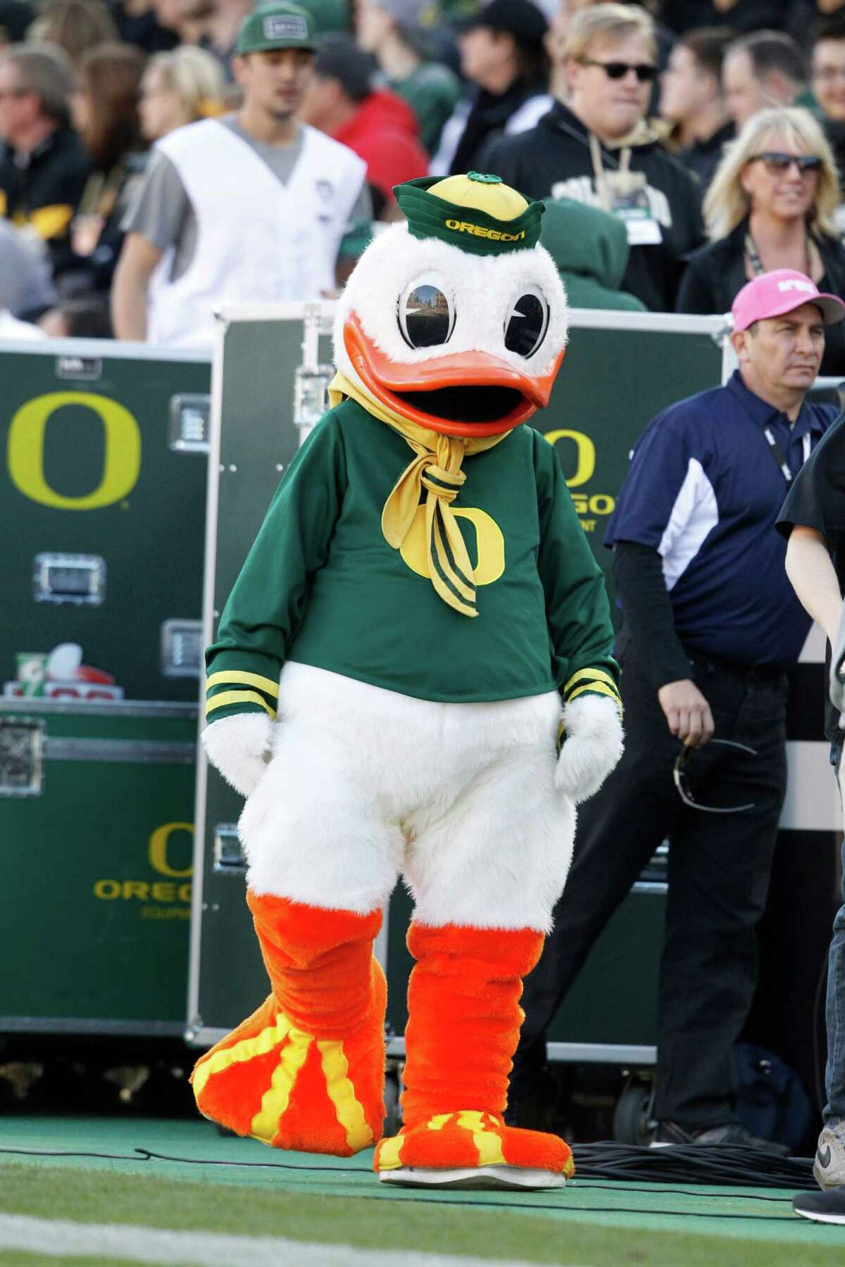 The Oregon Duck replaced the Webfoots as the official mascot.