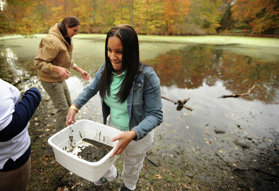Curiale School eighth grader Anny German, 14, of Bridgeport, carries a container of pond mud for analysis during a day of conservation science fieldwork at Connecticut Audubon's Larsen Sanctuary in Fairfield, Conn. on Tuesday, October 29, 2013. Part of Audubon's Science in Nature program, the students catalogued organisms collected in water samples from several different locations in the sanctuary. Photo: Brian A. Pounds / Connecticut Post