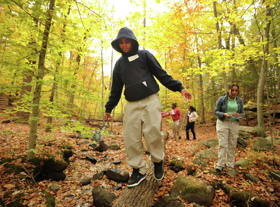 FAIRFIELD Take a guided hike through the Connecticut Audubon Society's Larsen Sanctuary from 10 to 11:30 a.m. Saturday, June 7. Click here for more info.  Photo: Brian A. Pounds / Connecticut Post