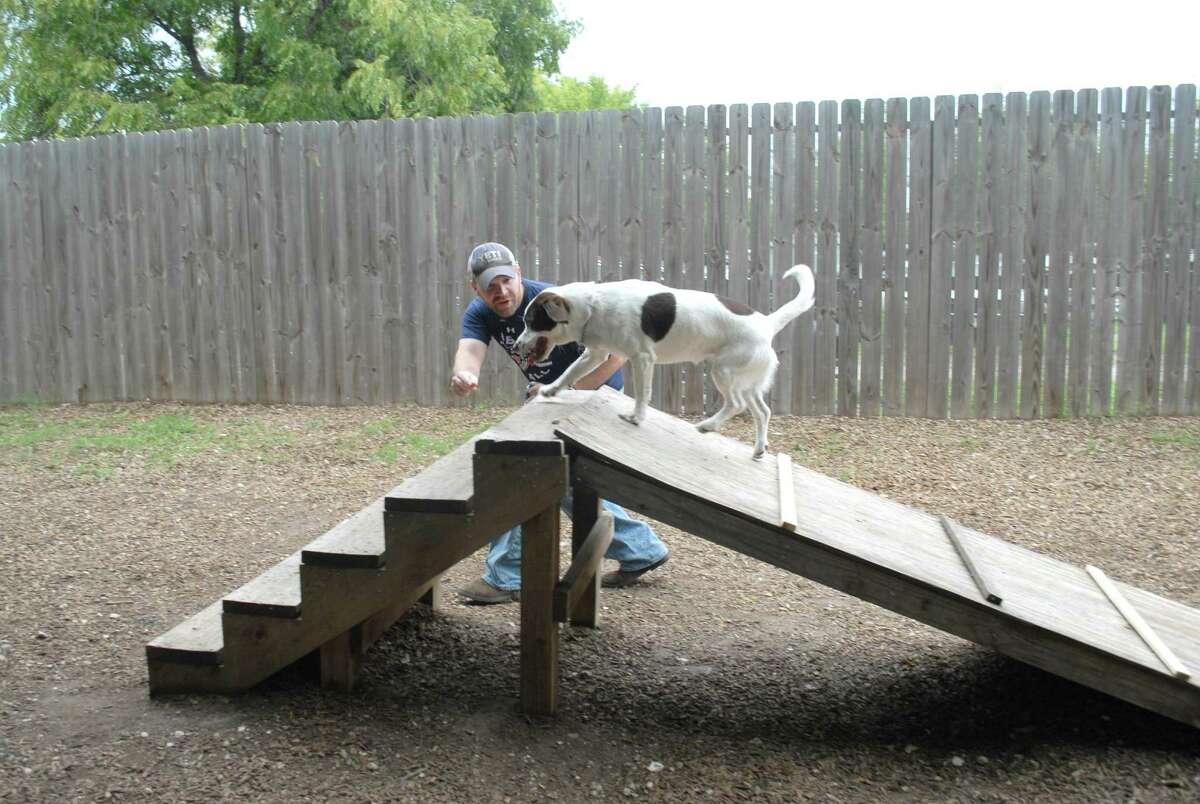 Breet Mixon coaches Bebe on how to run the ramp at the dog-friendly Boneyard Drinkery.