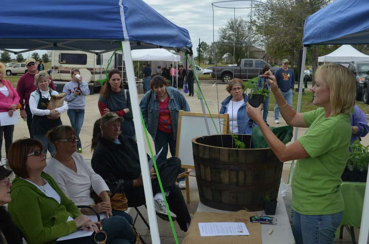 Educational programs at Bridgeland Farmers Market include tomato plant care and T-shirt making classes.