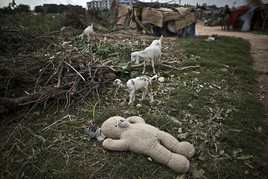 Wherever teddy bears are found, one is sure to find kids (baby goats): An abandoned stuffed animal lies next to a makeshift tent camp on the outskirts of Islamabad. Photo: Muhammed Muheisen, Associated Press