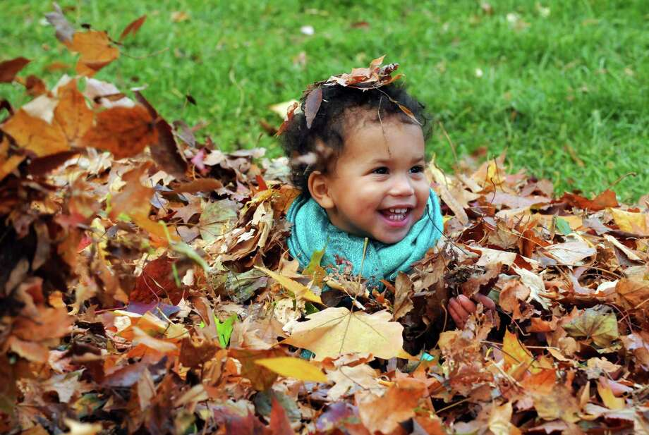 One-year-old Lyla Pierre of Saratoga Springs has fun playing in a pile of leaves as her and her family attend the High Rock Park farmers market on Wednesday Oct. 30, 2013 in Saratoga Springs, N.Y. (Michael P. Farrell/Times Union) Photo: Michael P. Farrell / 00024448A