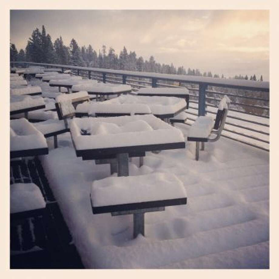Fluff on the deck at Mt. Rose. Photo: Mt. Rose, Courtesy