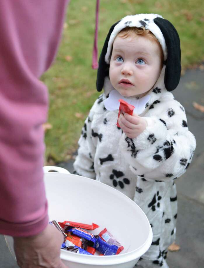 Dressed as a dalmation, Sophia Thorsson, 2, of Newtown, gets a piece of candy during Halloween trick-or-treat night in Newtown, Conn. on Thursday, Oct. 31, 2013.  After being cancelled the last two years due to poor weather conditions, hundreds of Newtown children and parents came out in costume this year, going door to door down Main Street. Photo: Tyler Sizemore / The News-Times