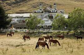 The 2,200-acre Madonna Inn is one of CaliforniaÕs best-known roadside institutions. Adding to its country charm are these grazing horses. Illustrates TRAVEL-OBISPO-INN (category t) by Christopher Reynolds © 2007, Los Angeles Times. Moved Tuesday, June 12, 2007. (MUST CREDIT: Los Angeles Times photo by Mel Melcon.)