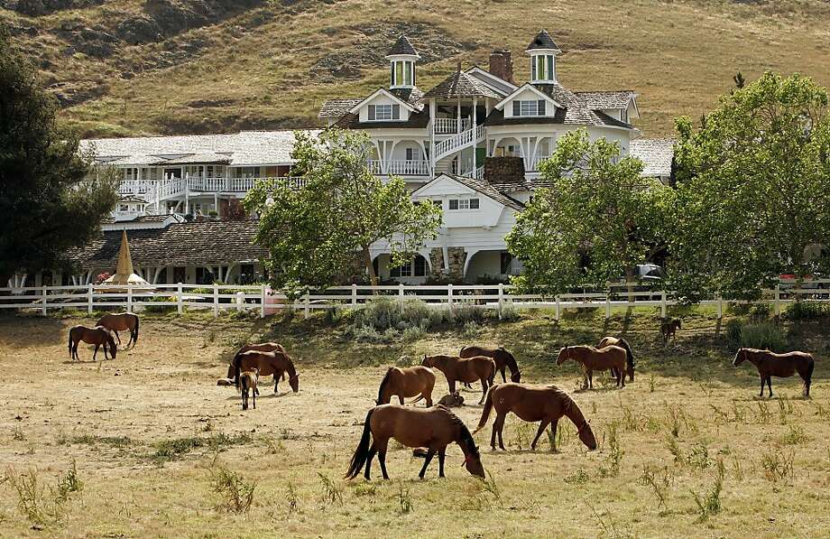 Horses graze outside the 110-room Madonna Inn in San Luis Obispo. Photo: Mel Melcon, TPN