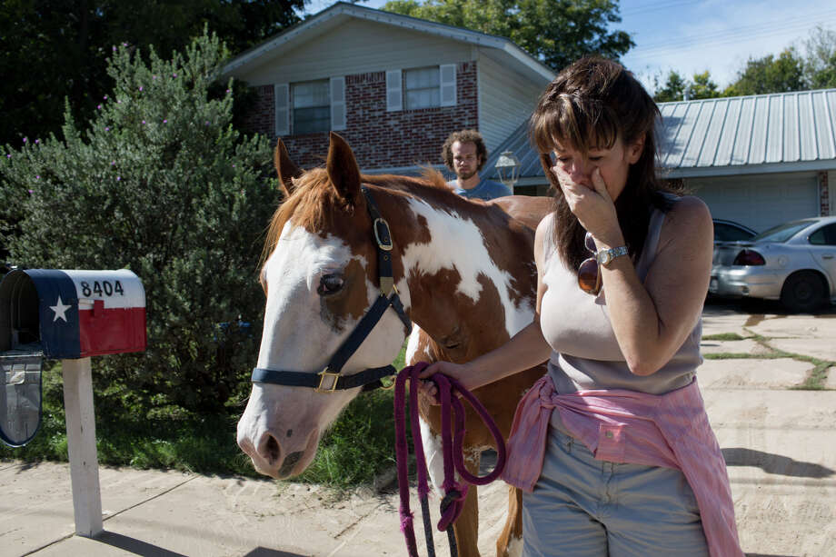 Divy Nelson stands with her horse, Amala, as she waits for an update on the status of 12 missing horses, one of which is hers, that were displaced from the same ranch after heavy rains flooded parts of the neighborhood around Onion Creek on Thursday Oct. 31, 2013 in Austin, Texas. The National Weather Service said more than a foot of rain fell in Central Texas. Photo: Tamir Kalifa, Associated Press / FR170773 AP