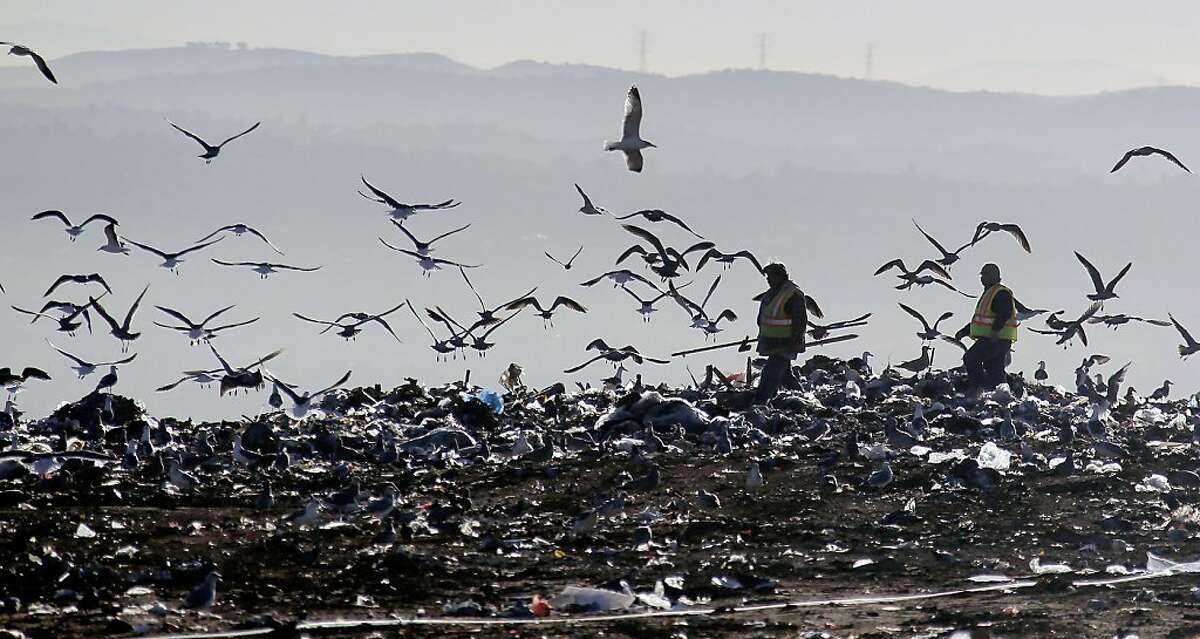 Workers walk through the trash at the Puente Hill Landfill in Puente Hills, Calif. on Thursday, October 31, 2013. The nation's largest landfill 20 miles east of Los Angeles where 130 million tons of garbage have been dumped is closing Thursday after more than a half-century of service. (AP Photo/Nick Ut)