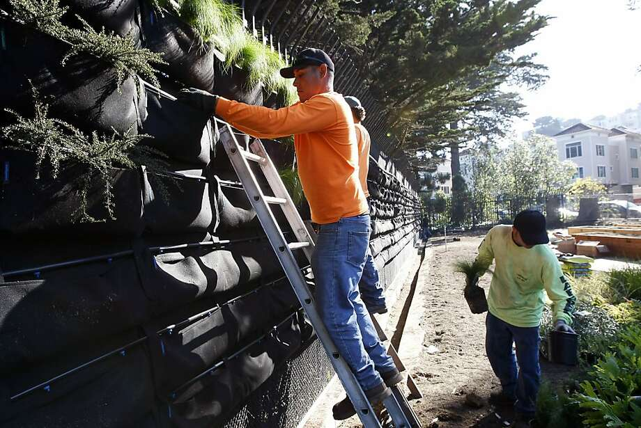 "Juan Gomez (left) of Bauman Landscaping puts plants into the ""Living Wall"" at the new Golden Gate Park community garden. Photo: Michael Short, The Chronicle"