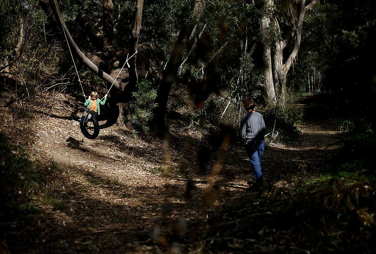 A tire swing gets some use on the paths on Mount Sutro in San Francisco, Calif., on Tuesday, October 29, 2013.