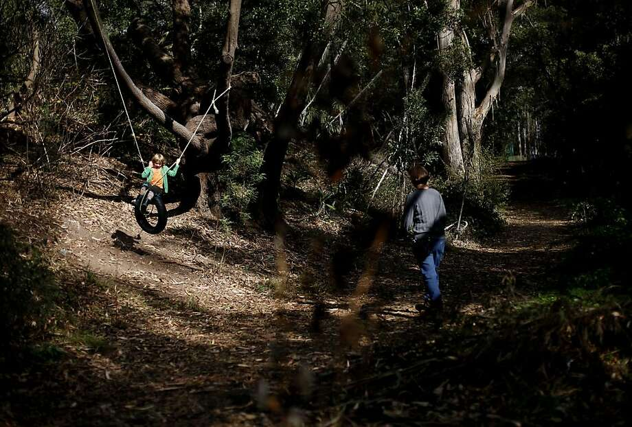 The walk will include paths on Mount Sutro, where this young hiker encountered a tire swing. Photo: Sarah Rice, Special To The Chronicle
