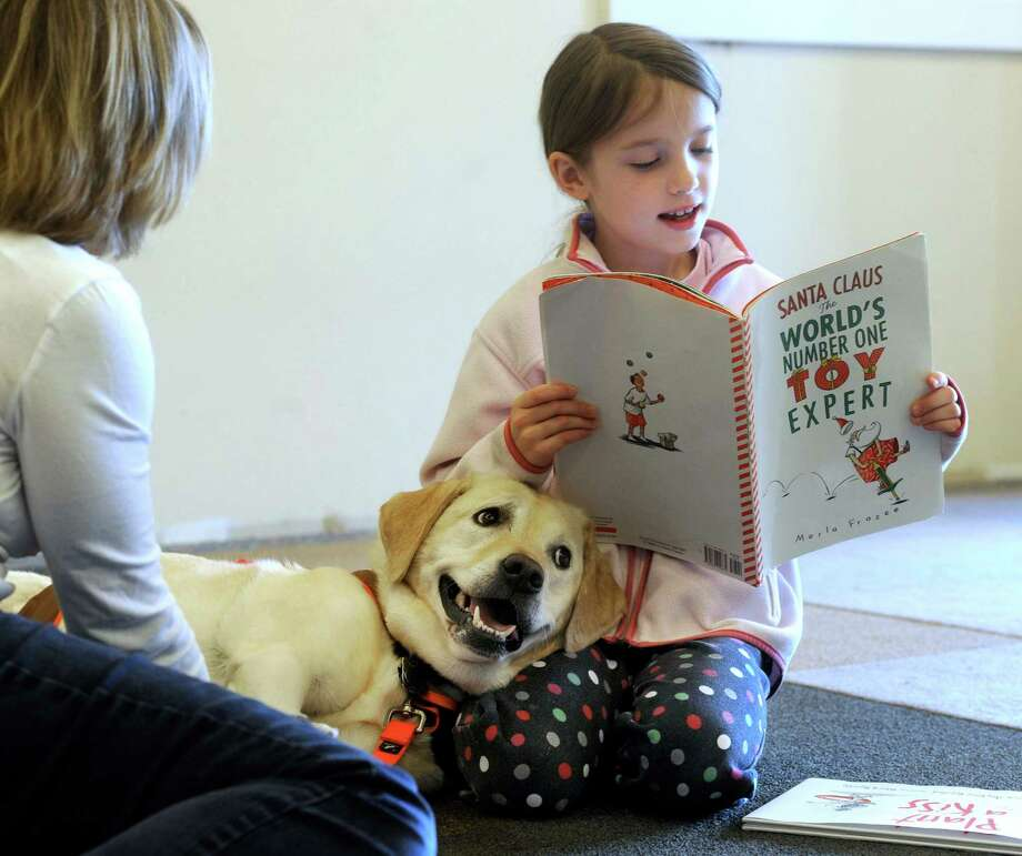 Hannah Lishawa, 7, of Ridgefield, Conn., reads to Lily, a ROAR therapy dog belonging to Carol Schwanhausser, 60, also of Ridgefield, Saturday, Nov. 2, 2013 at the Ridgefield Library. The 15 minute sessions were offered to children ages 4 to 8 from 11:15am to 12:45p.m. Photo: Carol Kaliff / The News-Times
