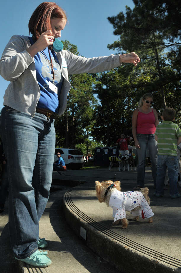 """Buddy Joe"", a six-year old rescue Yorkie, with his owner, Stephanie Hoverman, of Houston (77092), shows off his sequined suit, part of his ""Elvis"" costume, during the Kingwood Barkfest Costume Contest in Kingwood Town Center on Saturday. ""Buddy Joe"", is a member of ""The Bright & Beautiful Therapy Dogs"" and visits the Rosemont Assisted Living Facility in Atascocita. Photo: Jerry Baker, For The Chronicle"
