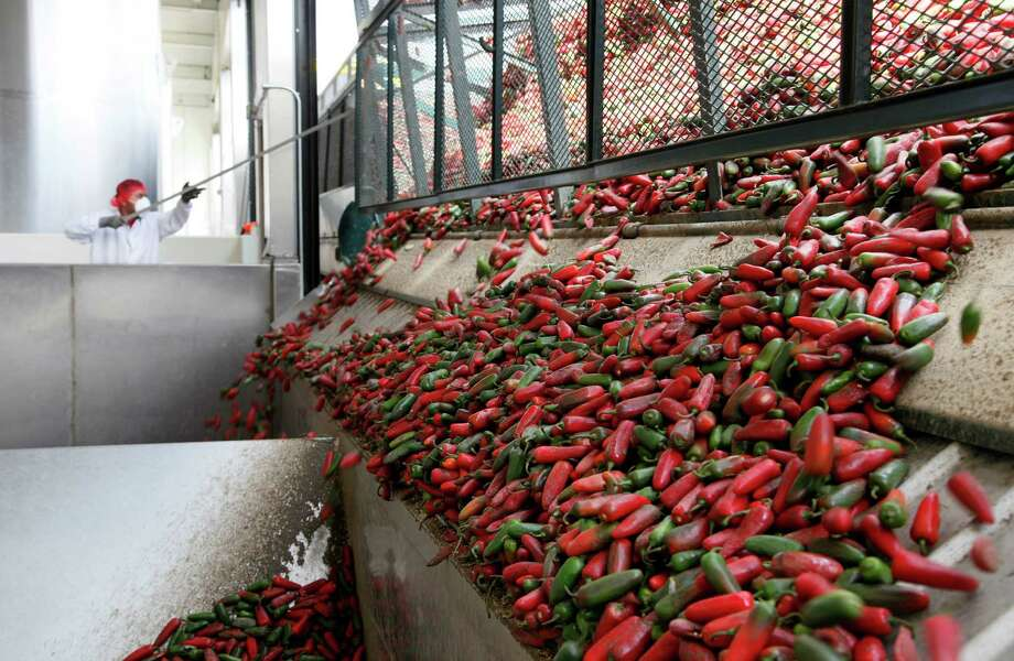 This Tuesday Oct. 29, 2013 photo a worker unloads chili peppers for making of Sriracha chili sauce at the Huy Fong Foods factory in Irwindale, Calif. The maker of Sriracha hot sauce is under fire for allegedly fouling the air around its Southern California production site. The city of Irwindale filed a lawsuit in Los Angeles Superior Court on Monday Oct. 28, 2013 asking a judge to stop production at the Huy Fong Foods factory, claiming the chili odor emanating from the facility is a public nuisance. Photo: Nick Ut, AP / AP2013