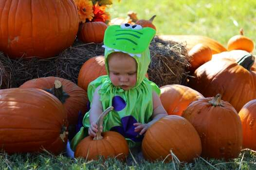 Stephen's 1st Halloween! (6 months old).