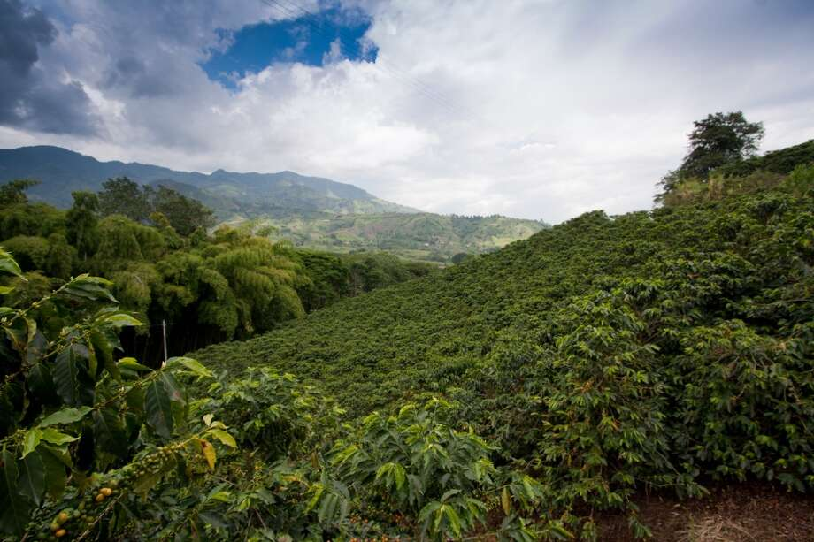 3.Colombian Coffee Cultural Landscape, Colombia Photo: Thecolombianway.com, Getty Images/Flickr Open
