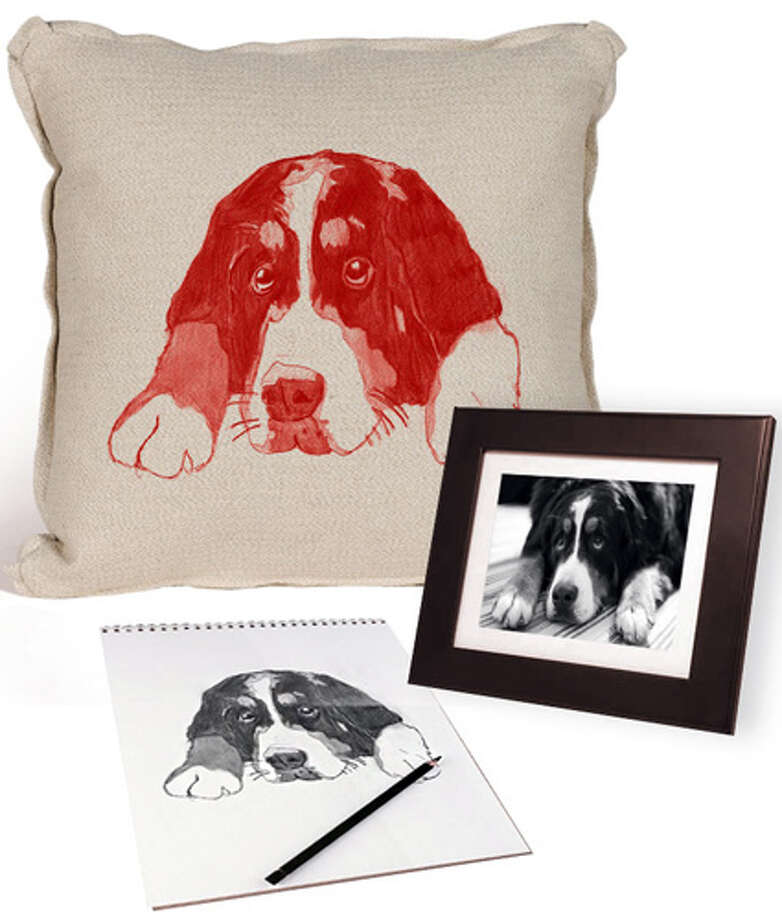 "Custom Illustrated PillowOprah says: ""Send in a photo of your pet, and this company will create a hand-drawn illustration of her, print it on a Belgian linen case and use it to cover a goose down pillow.""I say: I don't need a $300 pillow with an illustration of my dog on it. I know what he looks like; his fat butt will be planted on that thing as soon as I throw it on the couch.Read more at Oprah.com Photo: Charlesfradinhome.com"