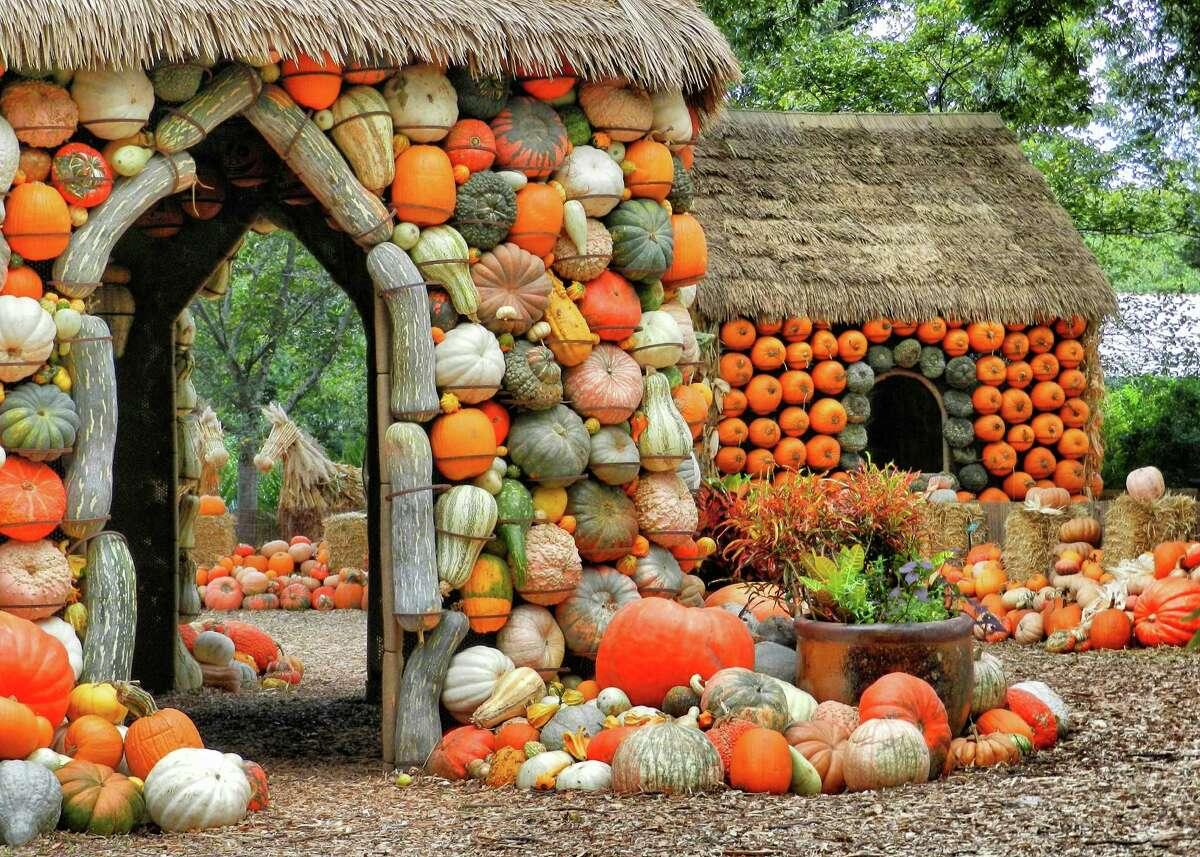 The Pumpkin Village at the Dallas Arboretum and Botanical Gardens. Courtesy photo