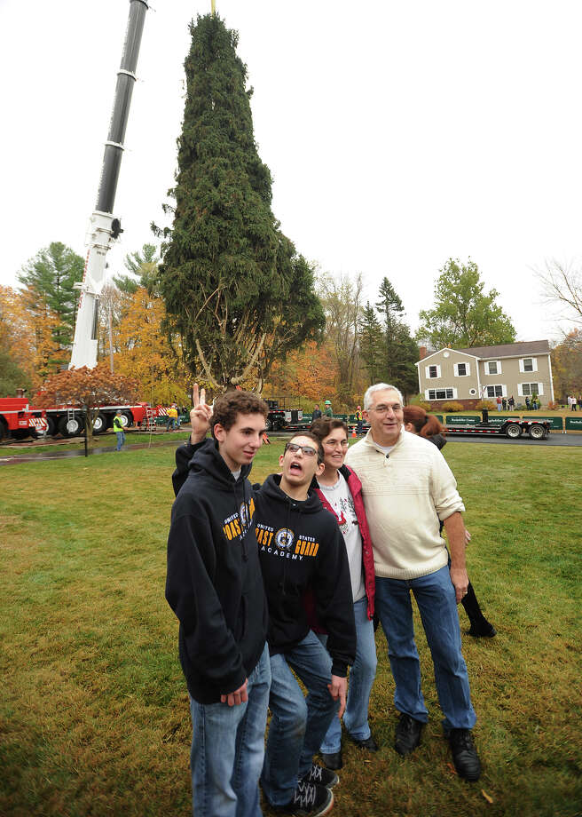 The new Rockefeller Center Christmas tree, a 76-foot tall Norway spruce, is loaded on to a trailer from the property of the Vargoshe family at 15 Kazo Drive in Shelton, Connecticut on Thursday, November 7, 2013. Photo: Brian A. Pounds / Connecticut Post