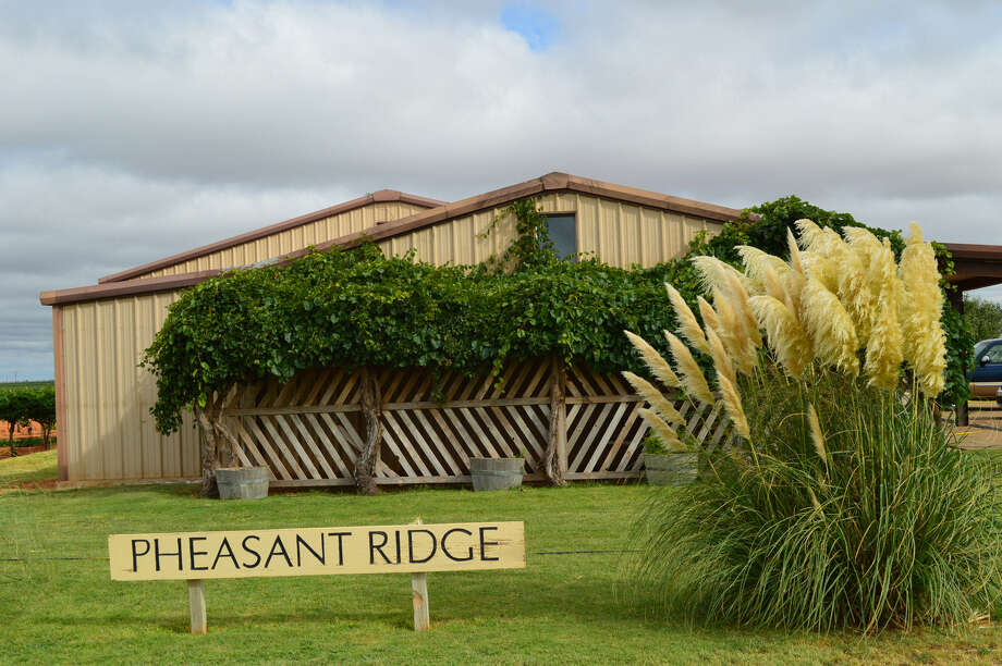Pheasant Ridge Winery was sold in four parcels that totaled $709,682.90. Bingham Family Vineyards had the winning bid for the winery and vineyards parcels. Photo: Courtesy Williams & Williams