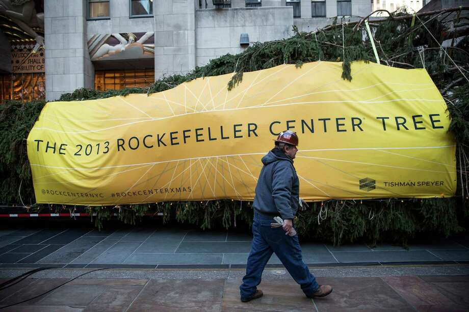 NEW YORK, NY - NOVEMBER 08:  A worker walks past a 76-foot tall Norway Spruce, from Shelton, CT, while it is prepared to be hoisted into position as the 2013 Rockefeller Center Christmas Tree on November 8, 2013 in New York City.  The tree comes from the Vargoshe family, it was likely planted in the 1950s.  (Photo by Andrew Burton/Getty Images) ORG XMIT: 187493731 Photo: Andrew Burton, Getty / 2013 Getty Images