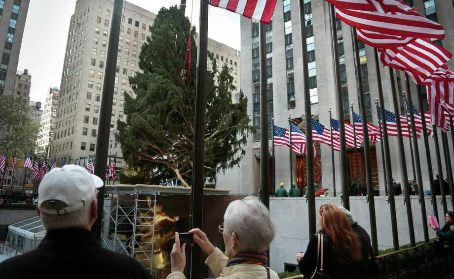 Visitor make photos of the Rockefeller Center Tree from Shelton, Conn., being raised and moved to its pedestal on Friday, Nov. 8, 2013 at Rockefeller Plaza in New York.  The 76-feet tall Norway spruce, donated by John Vargoshe and his wife Louise Vaargoshe, is approximately 75 years-old and weighs 12-tons. (AP Photo/Bebeto Matthews) ORG XMIT: NYBM103 Photo: Bebeto Matthews, AP / AP