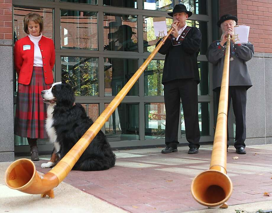 Chattanooga toot two: In Chattanooga, Tenn., McKee Bakery's Swiss Cake Rolls opens with solemn fanfare supplied by Swiss alphorns and a Bernese Mountain Dog named Jimmy. Photo: Maura Friedman, Associated Press