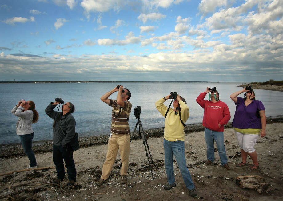 File photo of birders on the shore of Stratford Point in Stratford in October of 2011. A man-made reef could soon be built at Stratford Point to blunt the huge waves generated by hurricane-force winds from storms like Irene and Sandy. Photo: Brian A. Pounds / Connecticut Post