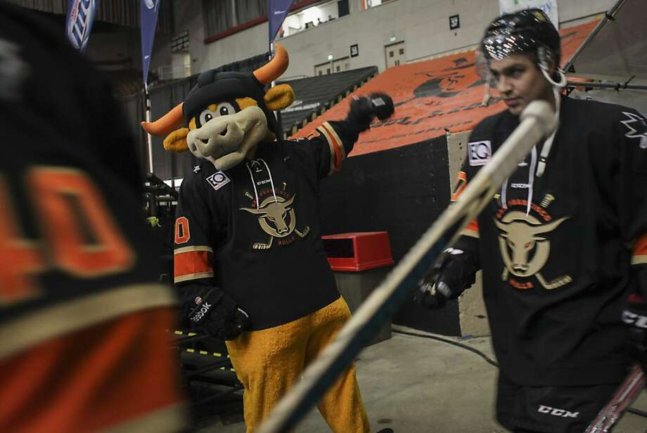 The San Francisco Bulls walk to the ice during their opening night match against the Bakersfield Condors at Cow Palace in San Francisco on November 8th 2013. Photo: Sam Wolson, Special To The Chronicle