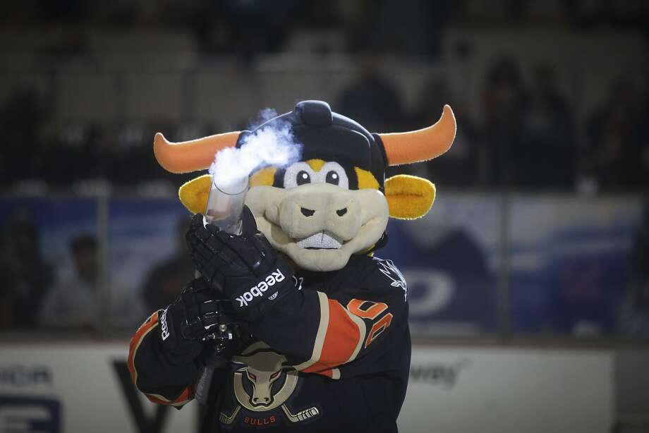 Rawhide, the Bulls official mascot, shoots t-shirts to fans during the San Francisco Bulls opening night match against the Bakersfield Condors at Cow Palace in San Francisco on November 8th 2013. Photo: Sam Wolson, Special To The Chronicle
