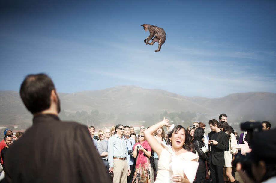 Photos provided by the blog Brides Throwing Cats. Photo: Courtesy