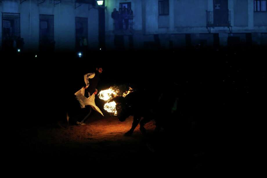 """In this photo taken on Saturday, Nov. 9, 2013, a fire bull chases a reveler during the 'Toro de Jubilo' Fire Bull Festival in Medinaceli, Spain. Fire bull Festival """"Toro de Jubilo"""" that takes place in the main square of Medinaceli is an ancient tradition from the bronze age. During the event a bull is tied to a pylon and flammable balls attached to the bull's horns are set on fire before the animal released. Revelers dodge the bull when it comes close until the flammable material is consumed. The bull is covered with a thick layer of mud on the back and face to protect it from burns. Photo: Andres Kudacki, AP / AP"""
