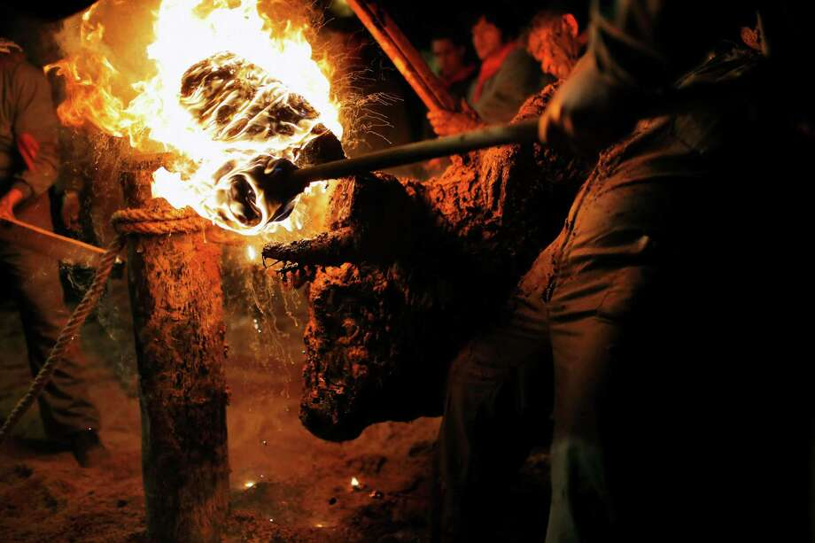 "In this photo taken on Saturday, Nov. 9, 2013, revelers set a bull's horns on fire during the 'Toro de Jubilo' Fire Bull Festival in Medinaceli, Spain. Fire bull Festival ""Toro de Jubilo"" that takes place in the main square of Medinaceli is an ancient tradition from the bronze age. During the event a bull is tied to a pylon and flammable balls attached to the bull's horns are set on fire before the animal released. Revelers dodge the bull when it comes close until the flammable material is consumed. The bull is covered with a thick layer of mud on the back and face to protect it from burns. Photo: Andres Kudacki, AP / AP"