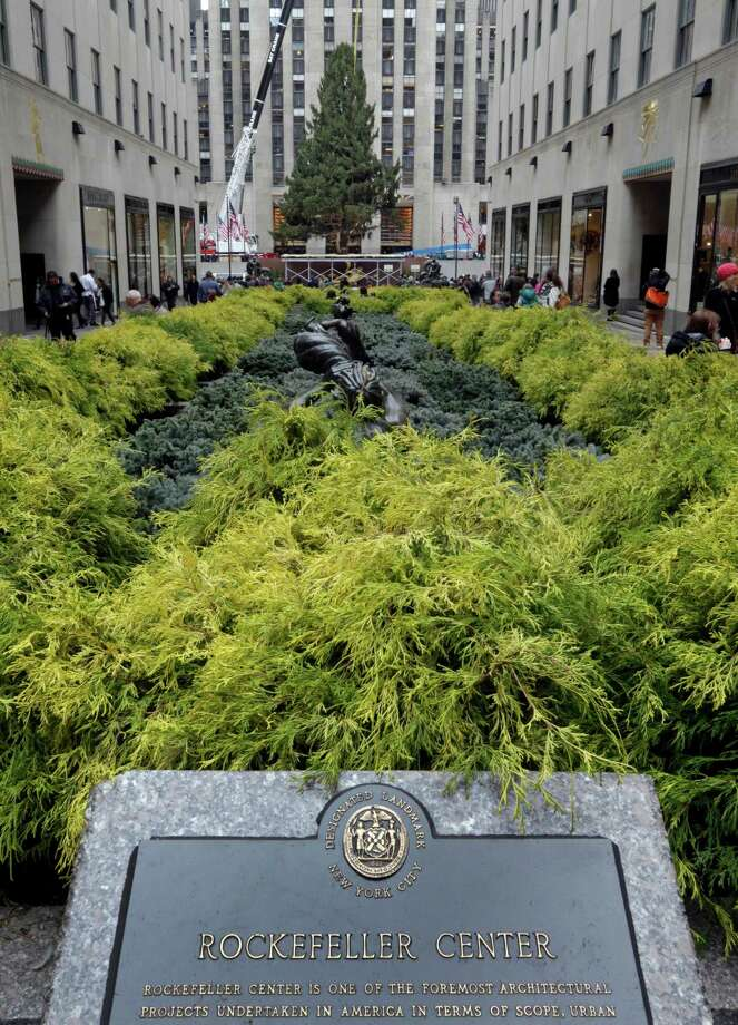 The Rockefeller Center Tree is seen through the Channel Gardens as its secured in place, Friday, Nov. 8, 2013, in New York. The 76-feet tall Norway spruce, donated by John and Louise Vaargoshe, of Shelton, Conn., is approximately 75-years-old and weighs 12 tons.  (AP Photo/Richard Drew) ORG XMIT: NYRD119 Photo: Richard Drew, AP / AP