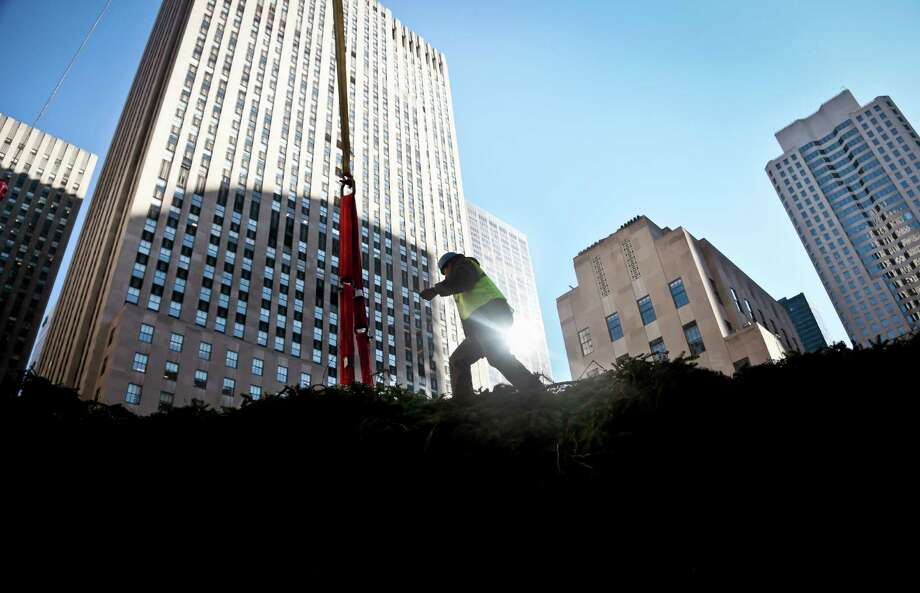 A worker walks atop the Rockefeller Center Tree, brought from Shelton, Conn., as it lays in the shadows before being placed on a pedestal on Friday, Nov. 8, 2013 at Rockefeller Plaza in New York.  The 76-feet tall Norway spruce, donated by John Vargoshe and his wife Louise Vargoshe, is approximately 75 years-old and weighs 12-tons. (AP Photo/Bebeto Matthews) ORG XMIT: NYBM106 Photo: Bebeto Matthews, AP / AP