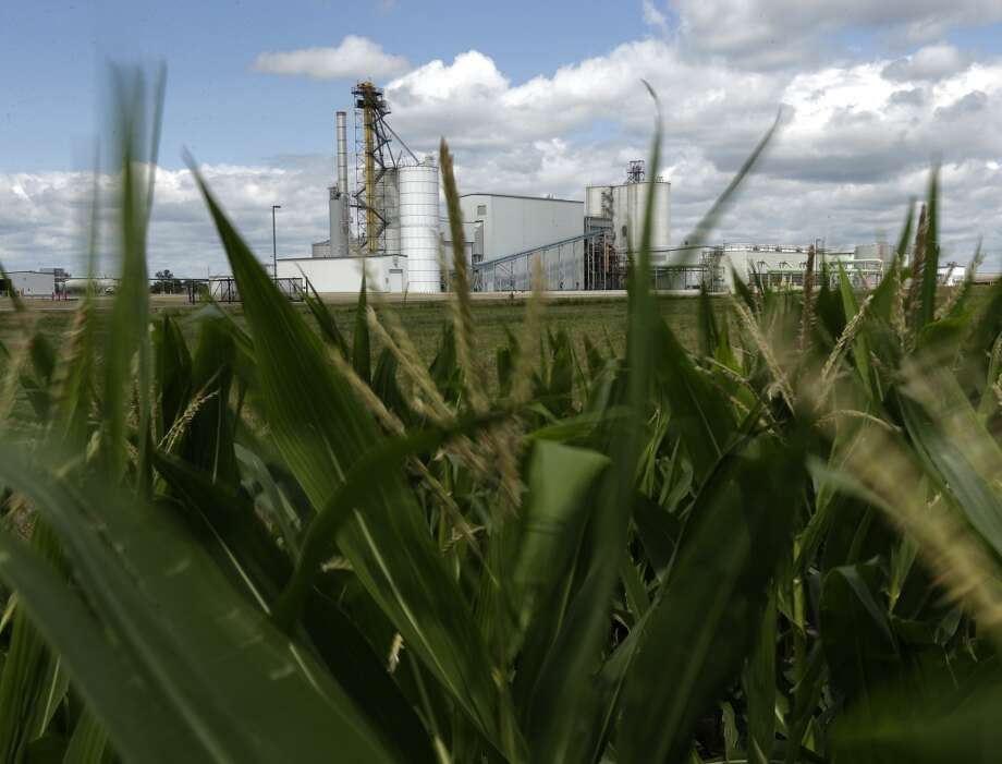 "An ethanol plant stands next to a cornfield near Nevada, Iowa. When President George W. Bush signed a law in 2007 requiring oil companies to add billions of gallons of ethanol to their gasoline each year, he predicted it would make the country ""stronger, cleaner and more secure."" But the ethanol era has proven far more damaging to the environment than politicians promised and much worse than the government admits today. Government mandates to increase ethanol production have helped drive up corn prices leading to marginal land being farmed to produce the crop. Photo: Charlie Riedel, AP"