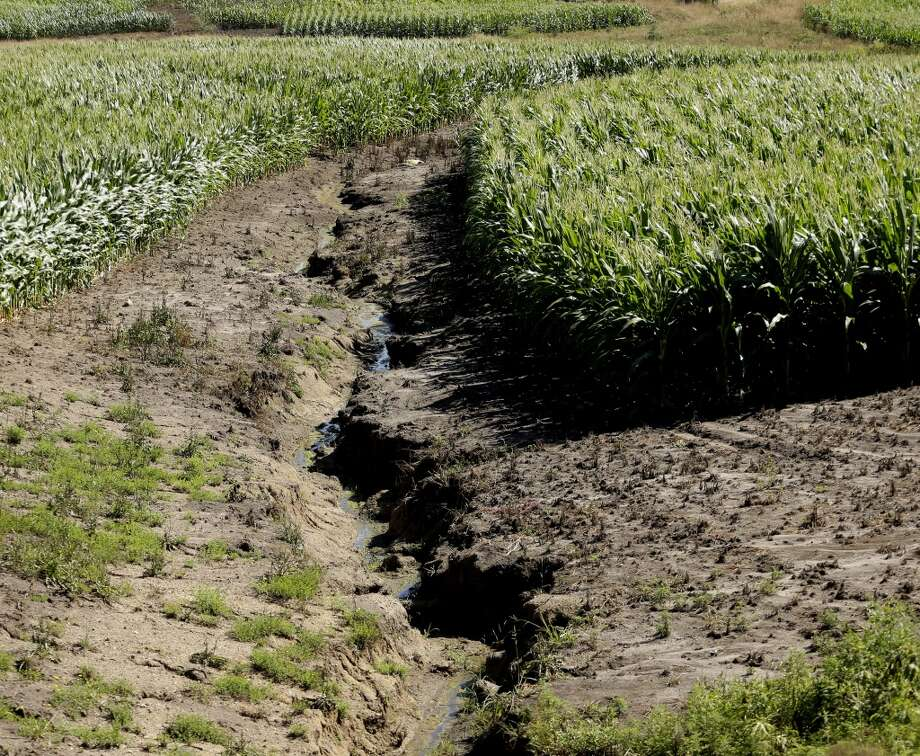 Erosion is seen in a cornfield that was recently converted from pasture near Lineville, Iowa. Five million acres of conservation land has been converted to row crops since Obama's ethanol mandate, leading to erosion and pollution from fertilizer runoff. Photo: Charlie Riedel, AP