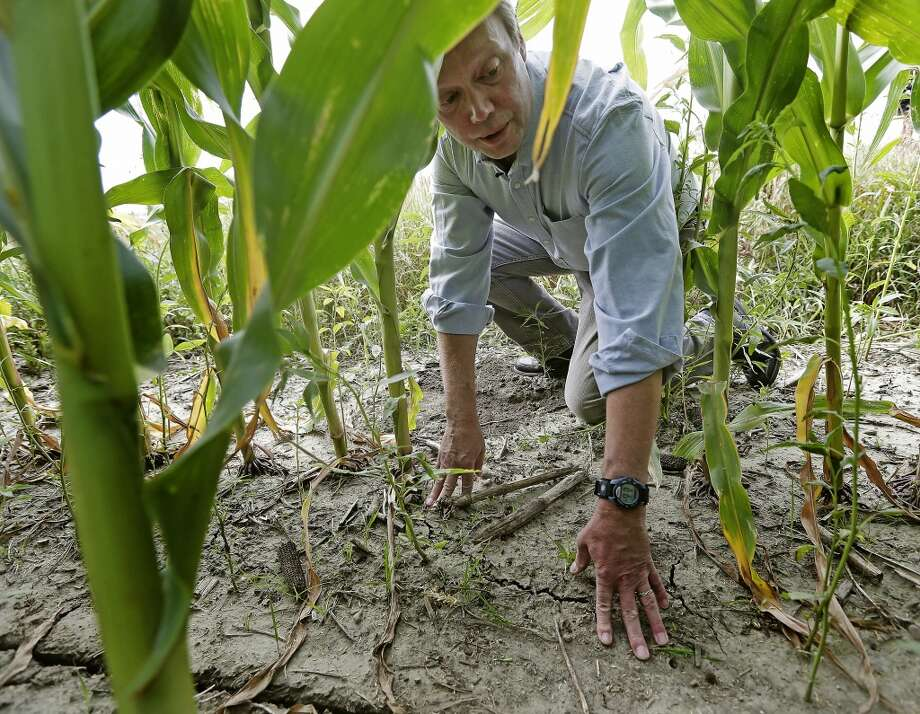 "Environmentalist Craig Cox looks at a corn field near Ames, Iowa. The government's predictions of ethanol's benefits have proven so inaccurate that independent scientists question whether it will ever achieve its sole environmental goal: reducing greenhouse gases. That makes the hidden costs even more significant. ""This is an ecological disaster,"" said Cox, with the Environmental Working Group, a natural ally of the president that, like others, finds itself at odds with the White House. Higher corn prices due to demand for the crop to produce ethanol has led to more acres planted and stream pollution from fertilizer runoff. Photo: Charlie Riedel, AP"