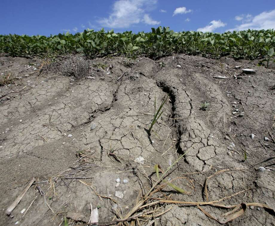Erosion is seen in field of soybeans that was recently converted to row crops near Corydon, Iowa. Millions of acres of row crops have been planted on former conservation land because of higher corn prices stemming from a mandate to produce more ethanol.  But the ethanol era has proven far more damaging to the environment than politicians promised and much worse than the government admits today. Photo: Charlie Riedel, AP