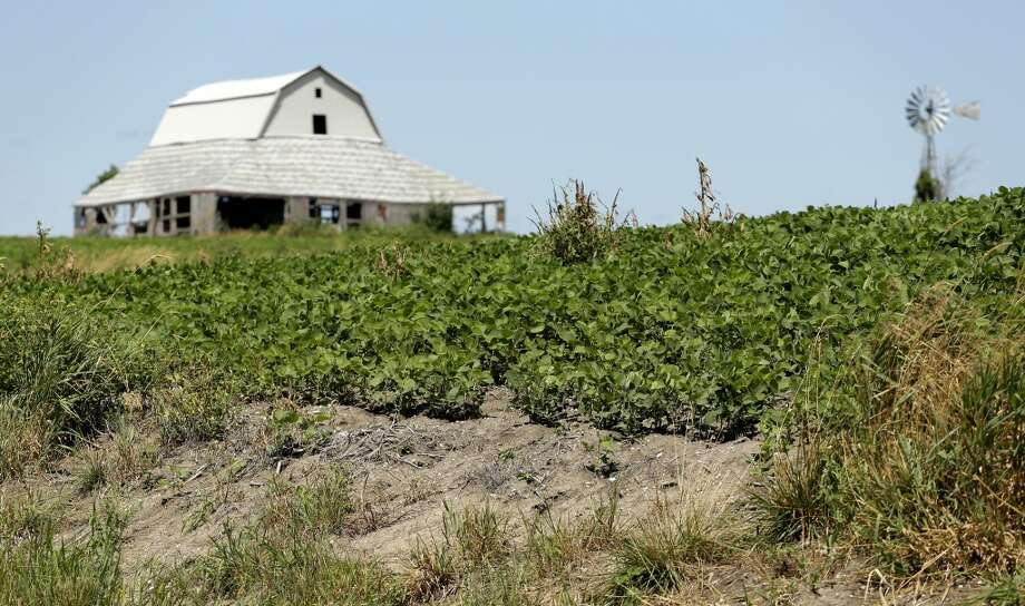 Erosion is seen in field of soybeans that was recently converted to row crops near Corydon, Iowa. The barn is also slated to be demolished to allow more acreage to be planted.  Government mandates to increase ethanol production have helped drive up corn prices leading to marginal land being farmed to produce the crop. Photo: Charlie Riedel, AP
