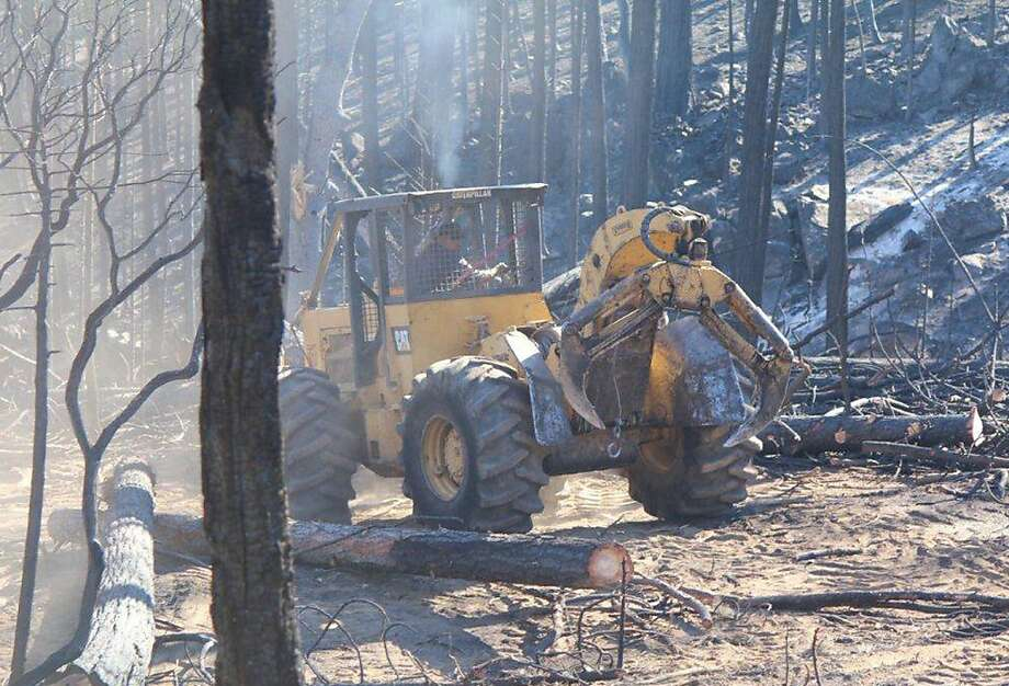 Crews salvage logs left after the Rim Fire in Stanislaus National Forest. Congress may expand salvage logging. Photo: Louis Sahagun, McClatchy-Tribune News Service