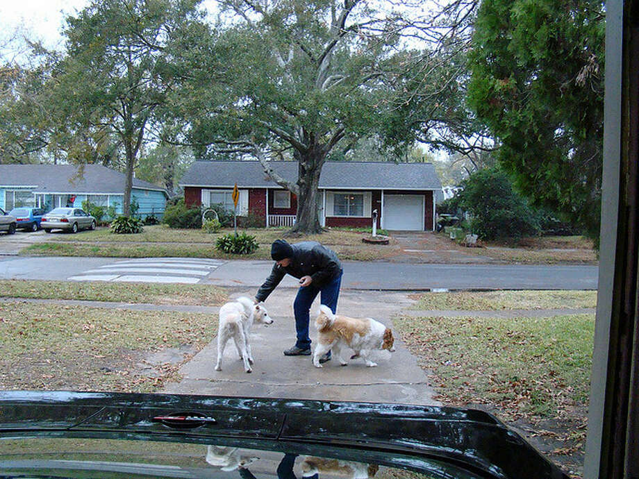 A Houstonian plays with their dogs after the December 2009 snow. Photo: Flickr Creative Commons/Texas Dark House