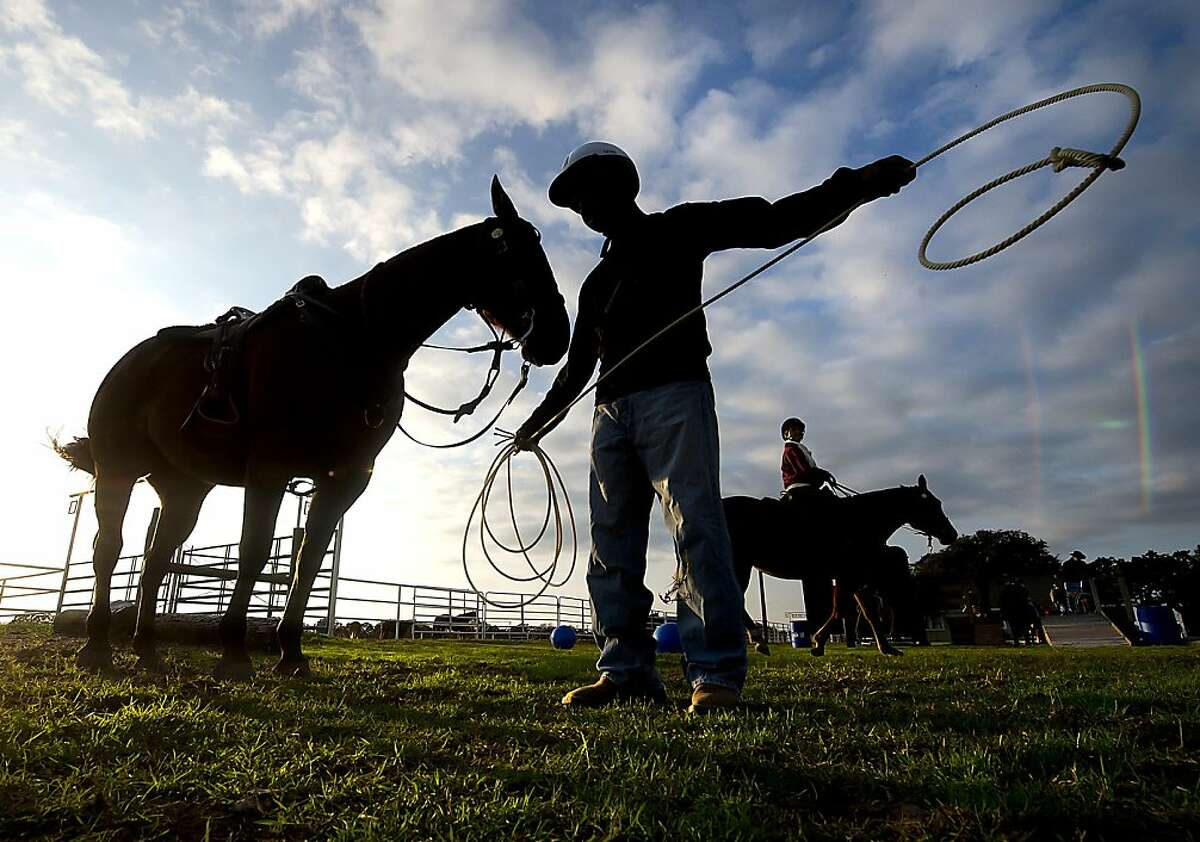 Texas A&M student Garrett Mitchell, a member of Parsons Mounted Cavalry, works with his horse at Fiddler's Green near the Texas A&M campus in College Station, Texas at sunset Tuesday, Nov. 12, 2013. Members of the notable Texas A&M Corps of Cadets unit, the only mounted ROTC unit in the nation, were taking the animals through an obstacle course to build confidence. (AP Photo/Bryan-College Station Eagle, Stuart Villanueva)